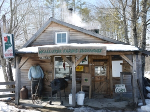 McAllister's Sugar Shack and Farm Stand, Waterford, Maine