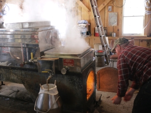 One of the men adds logs and stokes the fire that heats and boils the sap in the evaporator, eventually, turning it into syrup.