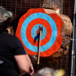 Excellent shot, but just short of a perfect bullseye.