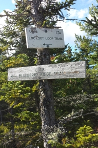 lookoutloopsign
