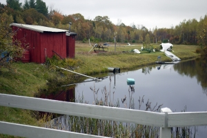 The pond the Woodwards constructed that is to the right of the bog.  At left is the pump house, which transfers the water from the pond to the bog and back again, as necessary.  To the immediate right of the pump house, also in red, is an outhouse with a composting toilet.