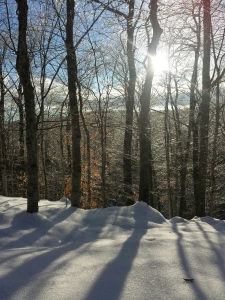 Afternoon shadows on the snowmobile trail