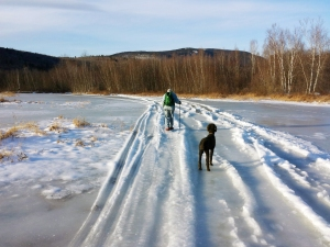 Crossing a frozen marshy pond
