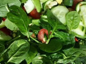 spinach salad version 1 - tomatoes, cukes, mushrooms, colored peppers, sunflower seeds