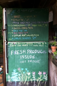 Freshly picked greens are put in bags in the stand's  fridge, waiting for customers.
