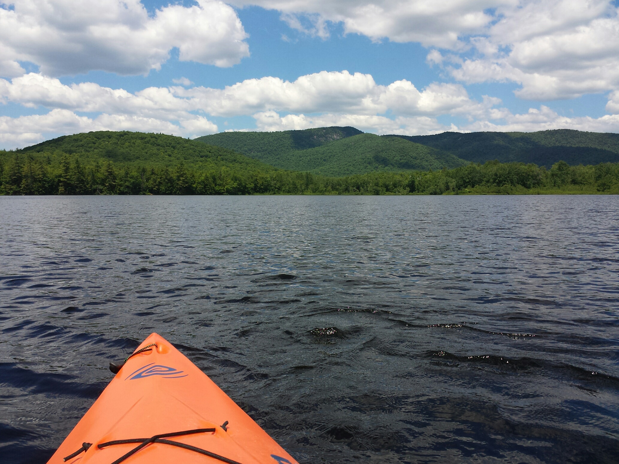 Floating platforms for nesting loons midlife in maine for Virginia lakes fishing