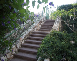 The biggest problem besides the price was how the house was sited.  The street and parking was at the top of the stairs.  It would not be terribly fun to negotiate these steps while carrying bags of groceries, especially as I get older!