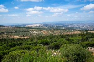 Views of the Galilee from the olive oil factory