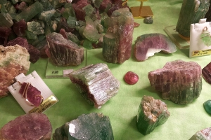 Watermelon tourmaline, so called because of its bicolor red and green