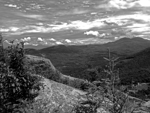 """This picture was a happy accident.  It was so bright and sunny at the top of Middle Sugarloaf, that I couldn't see the screen on my cellphone camera.  I must have clicked """"black and white"""" by mistake when I took this shot, and this was the happy result."""