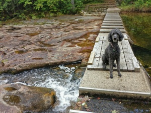 Spencer crosses the bridge over Cold River