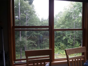 The dining room window