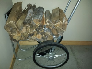 Bringing some logs indoors for our woodstove.