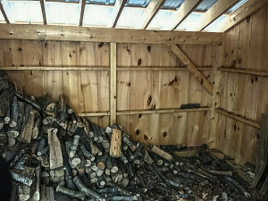 This shed wall was filled with 4 layers of wood stacked 6 1/2 feet high at the end of summer 2014.  We've managed to use up quite a bit by January 2015.