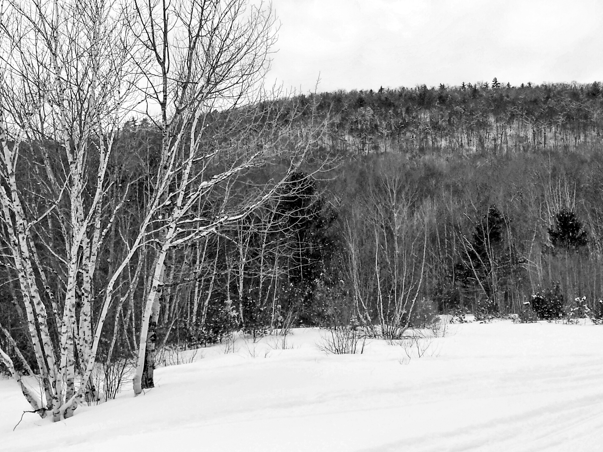 Wonderful Wallpaper Home Screen Snow - 2015-02-22-15-19-00  HD_628633.jpg