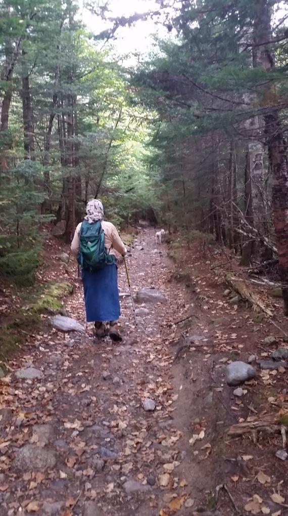 hikingwillard